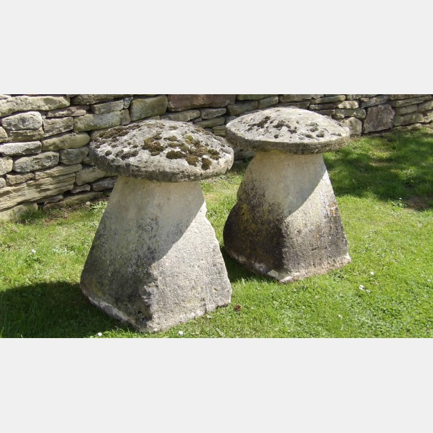 The Limestone Staddle Stones