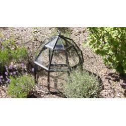 A Vintage Garden Cloche