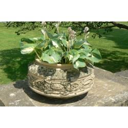 Vintage Terracotta Planter