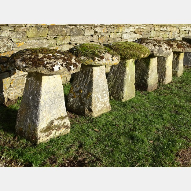Set of Six Antique Staddle Stones